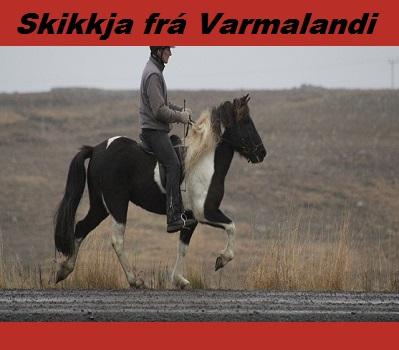 skikkja_fra_varmalandi