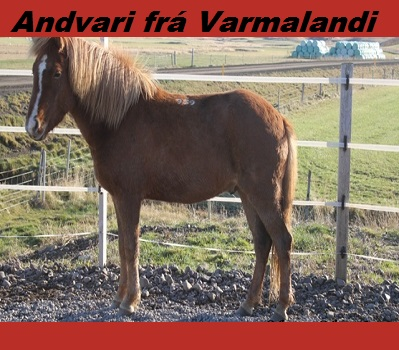 andvari_fra_varmalandi
