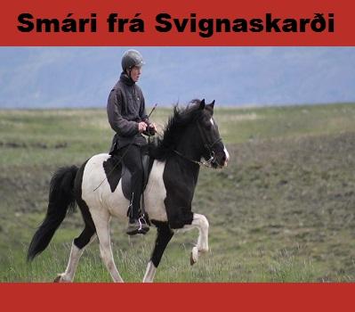 smari_fra_svignaskarði